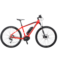 E-Bike Kreidler Vitality Dice 29er 1.0